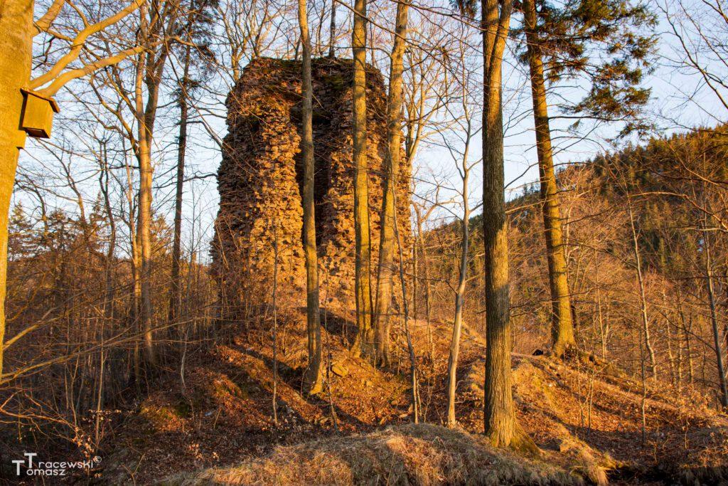 1.Wieża zakowa i okolica widok z południa