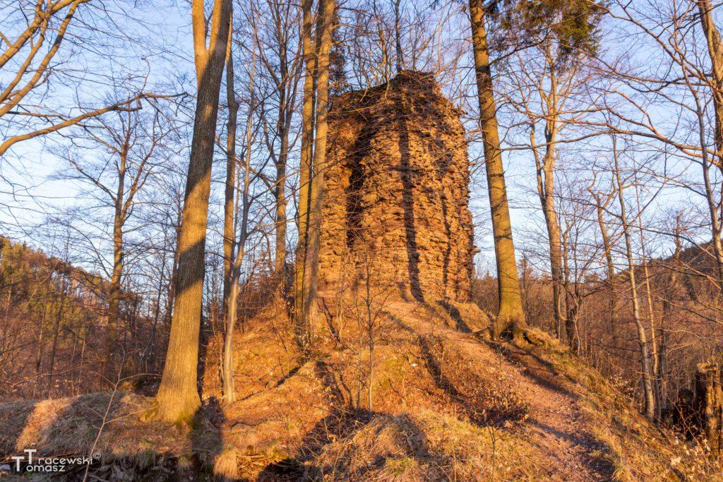 Panorama zamku od strony południa
