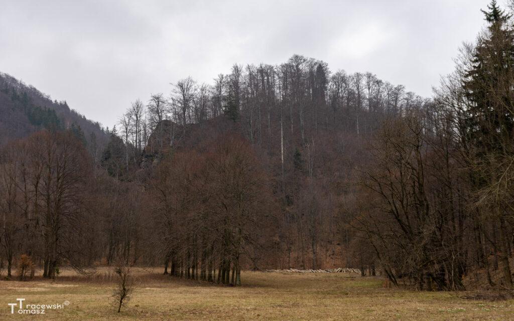 Widok na wzgórze zamkowe od strony Sokołowska