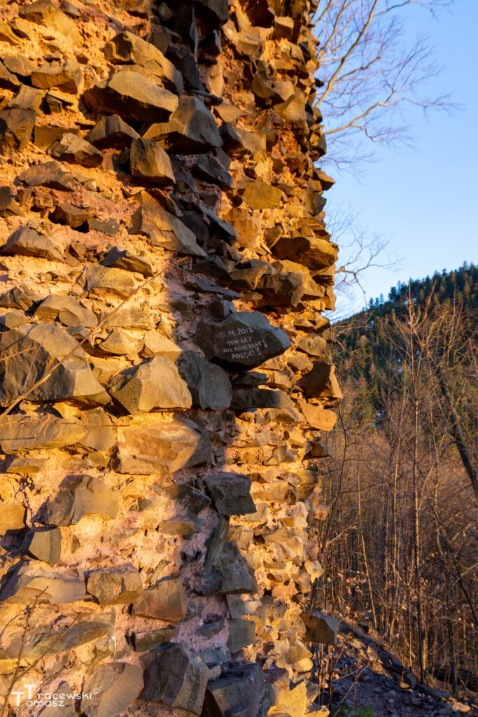 Wieża - w tle Suchawa